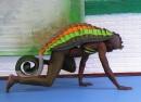 De Kameleon